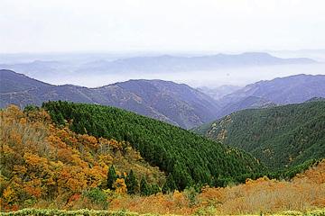 葛城山の紅葉