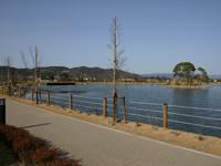 平池绿地公园